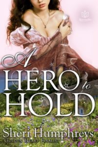 A Hero to Hold Ebook Cover
